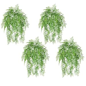 "Maidenhair Fern Hanging Bush in Green - 24"" Long 116"