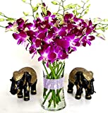 Purple Dendrobium Orchids with Vase w Ribbon