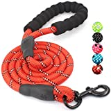 #6: BAAPET 5 FT Strong Dog Leash with Comfortable Padded Handle and Highly Reflective Threads for Medium and Large Dogs (Red)