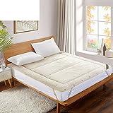 Textile wool mattress mattress bed thicken pad be dampproof anti-skid tatami mats double -A Queen2