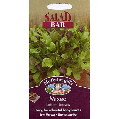 Semillas del señor Fothergill - barra de ensaladas mezcladas hojas de lechuga: Amazon.es: Jardín