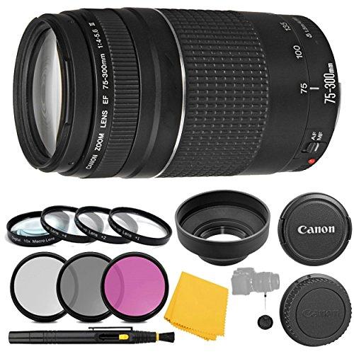 (Canon EF 75-300mm f/4-5.6 III Lens + 3 Piece Filter Set + 4 Piece Close Up Macro Filters + Lens Cleaning Pen + Pro Accessory Bundle - 75-300mm III: International Version (No Warranty))