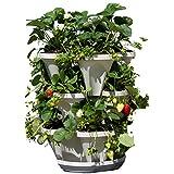 Mr. Stacky Self Watering 3 Tier Stackable Garden Vertical Planter Set, Stone