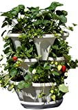 Mr. Stacky Self Watering 3 Tier Stackable Garden Vertical Planter Set, Stone