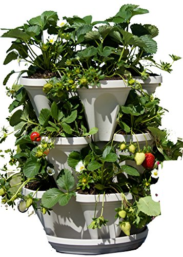 3 Tier Stackable Garden - Indoor / Outdoor Vertical Planter Set - Self Watering Tiers From Top Down - Grow Fresh Herbs In The Kitchen or Patio - Smart Planting Pots - Used for Strawberries Herbs Peppers Flowers and Succulents (Stone) (Stone Patio Set Top)