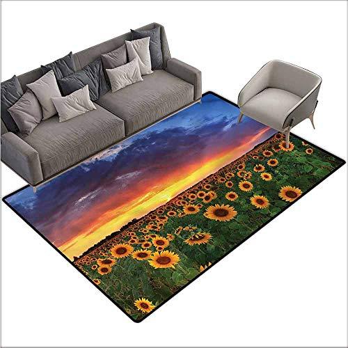 (Indoor Super Absorbs Doormat Sunflower,Field Dramatic Sunset 48