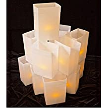 Luminary Light Sets - Hard Plastic Reuseable Weather Proof Box with LED Tea Lights (WHITE)
