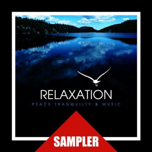 Relaxation Sampler