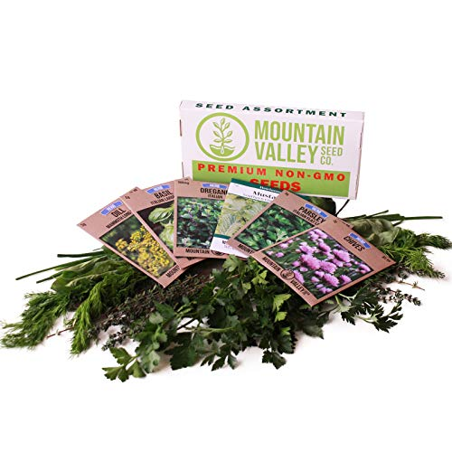Culinary Herb Seeds Garden Collection | Basic Assortment | 6 Non-GMO Seed Packets: Basil, Dill, Oregano, Parsley, Chives & Mustard | Grow Cooking Herbs & Spices ()