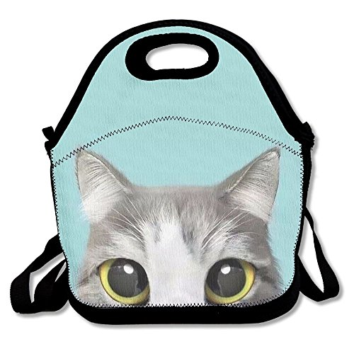BesHomes Perfect Gifts - Cute Lovely Kitten Cat Turquoise Lunch Tote Bags Awesome Lunch Handbag Lunchbox Box For School Work (Turquoise Lunch Box)