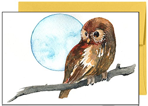 Night Owl Premium Note Cards Greeting Cards - Boxed Set of 20 Cards and Matching Envelopes