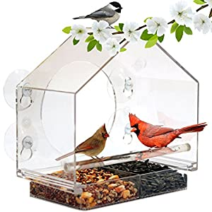 Window Bird Feeder by Nature Anywhere (Size:Large). GIFT EDITION. Includes Free, Easy Removable Tray, 4 Heavy Duty Suction Cups, Drain Holes & Gorgeous Packaging.