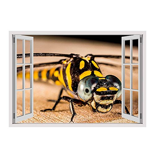 Alonline Art - Dragonfly Insect Fake 3D Window PRINT On CANVAS (100% Cotton, UNFRAMED Unmounted) 43