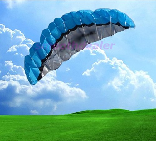 4 Colors 2.5m Power Dual Line Parafoil Parachute Sports Beach Kite Easy to (Aerial Acrobatics Costumes)