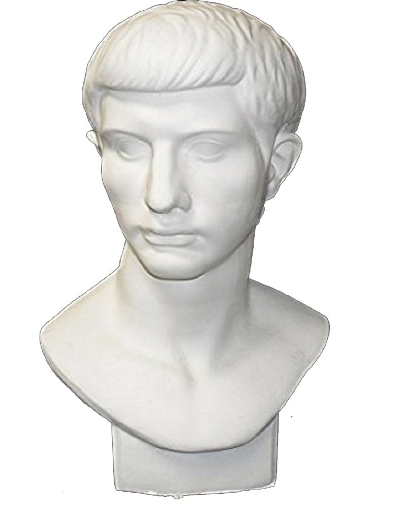 Torino GES-102 Life Size Bust of Roman Youth Plaster Cast Mannequin, Great for Artists, Artistic piece, Color: White, Size: 9'' X 11'' X 18''
