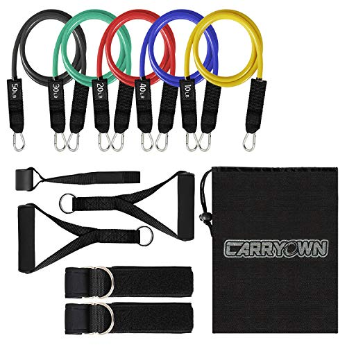 13 pcs Resistance Bands Set Workout Bands Exercise Bands Adult - Include 5 Stackable Exercise Bands + 2 Core Sliders with Door Anchor and Handles, Legs Ankle Straps, Carry Bag & Guide Book for Home (5 Best Leg Workouts)