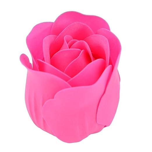 Amazon.com: eDealMax Ornamento de la Flor de la Novia de Regalo Artificial del Cuerpo del pétalo del jabón de baño caja DE 18 piezas de Color de rosa: Home ...