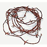 Amazon Price History for:Fun Express Soft to The Touch Rusty Barbwire Cord Decoration, 18'