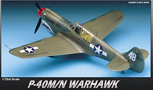 P-40 Fighter - 7