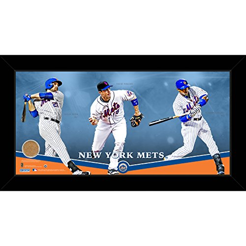 Field Framed Photomint - Steiner Sports MLB New York Mets Players Composition Graphic Framed Collage with Game Used Dirt from Citi Field, 10