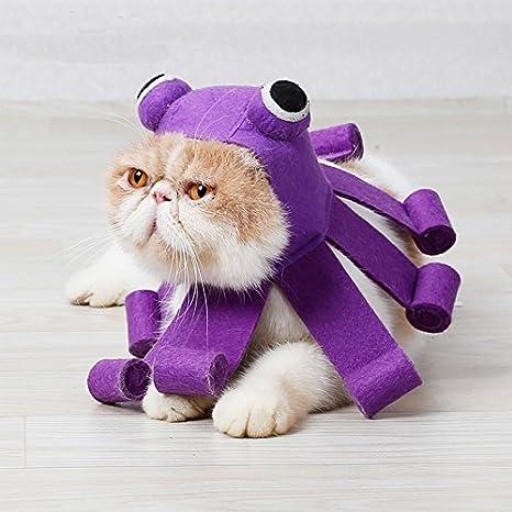 Amazon.com: Urijk - Gorro de Halloween para gatos y perros ...