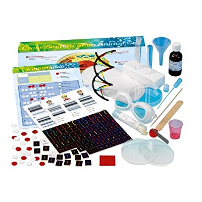Thames & Kosmos Biology Genetics and DNA: Toys & Games