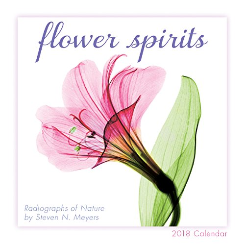 Flower Spirits: Radiographs Of Nature By Steven N. Meyers 2018 Mini Calendar (CS0197)