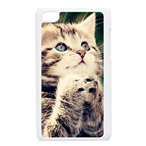 Cute Adorable Ginger Kitten Cat Make A Vow Case Cover Protectors for Apple iPod Touch 4 4th Generation Kimberly Kurzendoerfer
