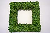 Tradingsmith Preserved Boxwood Square Wreath 20 in