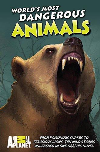 (Animal Planet: World's Most Dangerous Animals )