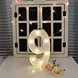 YANROO Decorative Led Light Up Number Letters