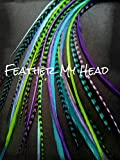 Feather Hair Extensions - 16 Piece - Purple Green Blue - Caribbean 11'' - 14'' Long (28-36 cm)