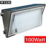400w super hps bulb - 12000lm Super Bright 100Watt LED Wall Pack Light,350-400W HPS MH Bulb Replacement,Outdoor LED Lighting Fixture for Building Home Security and Walkways (100Watt)