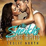 The Sheikh's Surprise Triplets: Azhar Sheikhs, Book 3 | Leslie North