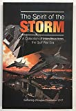img - for The Spirit of the Storm: A Collection of Interviews from the Gulf War Era book / textbook / text book