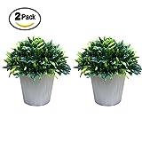 Vaughenda 2 Pack Artificial Plants Fake Plants Simulation Plastic Bonsai Artificial Bonsai Tree for Office,Shop,Home Decor(Hemisphere)