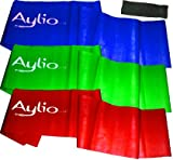 Aylio Fitness 3 Exercise Bands and Door Anchor (Low, Medium, Heavy) by Aylio Fitness