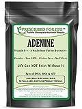 Adenine - Vitamin B-4 Powder - A Nucleobase Purine Derivative, 2 oz