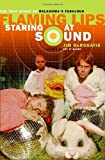 Staring at Sound, Jim DeRogatis, 0767921402