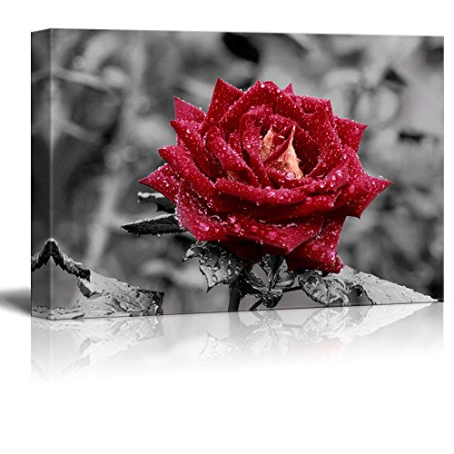 Wall26 - Canvas Prints Wall Art - Red Rose on Grey | Modern