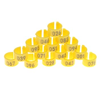 100 Pcs Aluminium Pigeon Leg Rings Identify Dove Bands 8 MM Multi-Color  Bird of Peace Leg Bands Numbered Al GB Training Rings for Parrot Quail  Finch