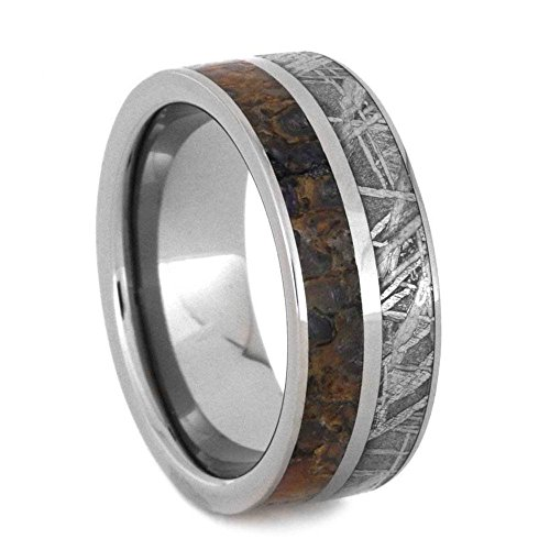 Gibeon Meteorite and Dinosaur Bone 8mm Comfort-Fit Titanium Band and Sizing Ring, Size 7 by The Men's Jewelry Store (Unisex Jewelry)