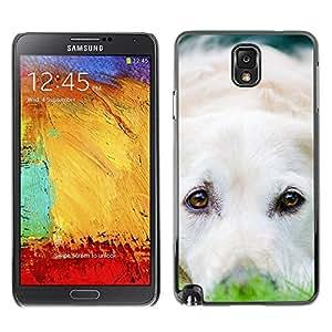 YiPhone /// Prima de resorte delgada de la cubierta del caso de Shell Armor - Labrador Retriever White Dog Puppy - Samsung Galaxy Note 3 N9000 N9002 N9005