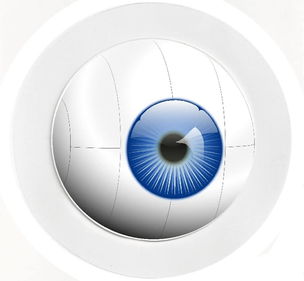 Reuseable Eye Ball Car Tax Disc Holder Cartoon//Fun