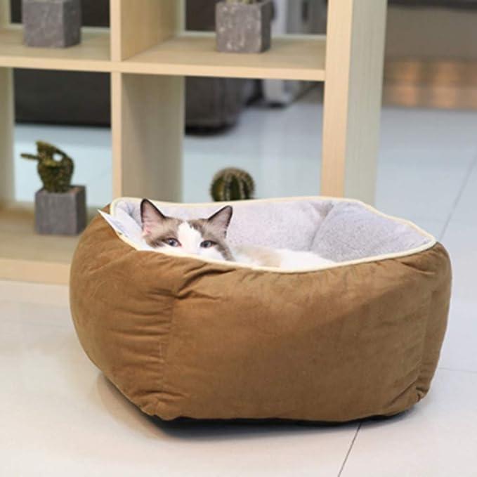 YYZ Cama de Gato,Suave Confortable Sencillo Four Seasons Universal Ambos Lados Pueden ser utilizados para Gatos y Perros pequeños- Lavable en la Lavadora ...