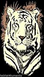 5 X 8 White Tiger Head Black African Africa Wildlife Safari Area Rug