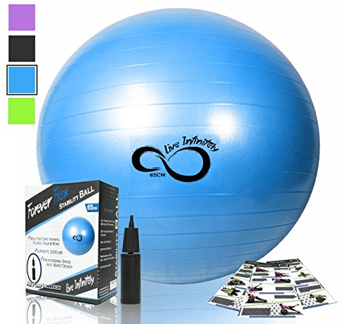 Exercise Ball -Professional Grade Exercise Equipment Anti Burst Tested with Hand Pump- Supports 2200lbs- Includes Workout Guide Access- 55cm/65cm/75cm/85cm Balance Balls (Blue, 65 cm)