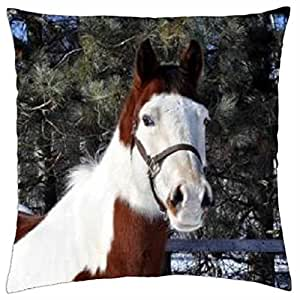 Cold, but Waiting Patiently - Throw Pillow Cover Case (18