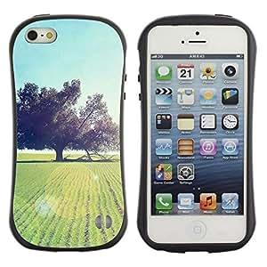 LASTONE PHONE CASE / Suave Silicona Caso Carcasa de Caucho Funda para Apple Iphone 5 / 5S / Nature Beautiful Forrest Green 93