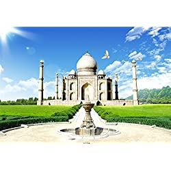 OFILA Taj Mahal Backdrop 7x5ft Indian Building Bright Sunshine Blue Sky Birds Grass Land Pillars Travel Photos Mosque World Wonder Muslim Art Heritage Mausoleum Party Background Video Studio Props